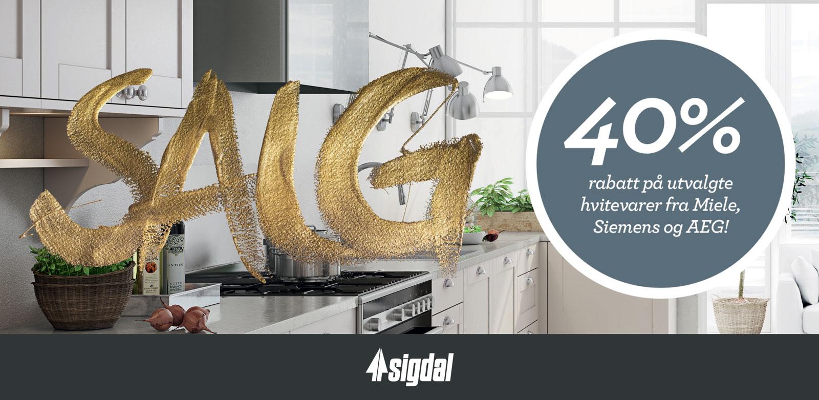 Salgs plakat for Sigdal